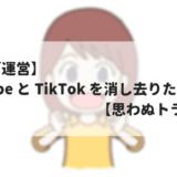 【ブログ運営】Youtube と TikTok を消し去りたい話し【思わぬトラップ】